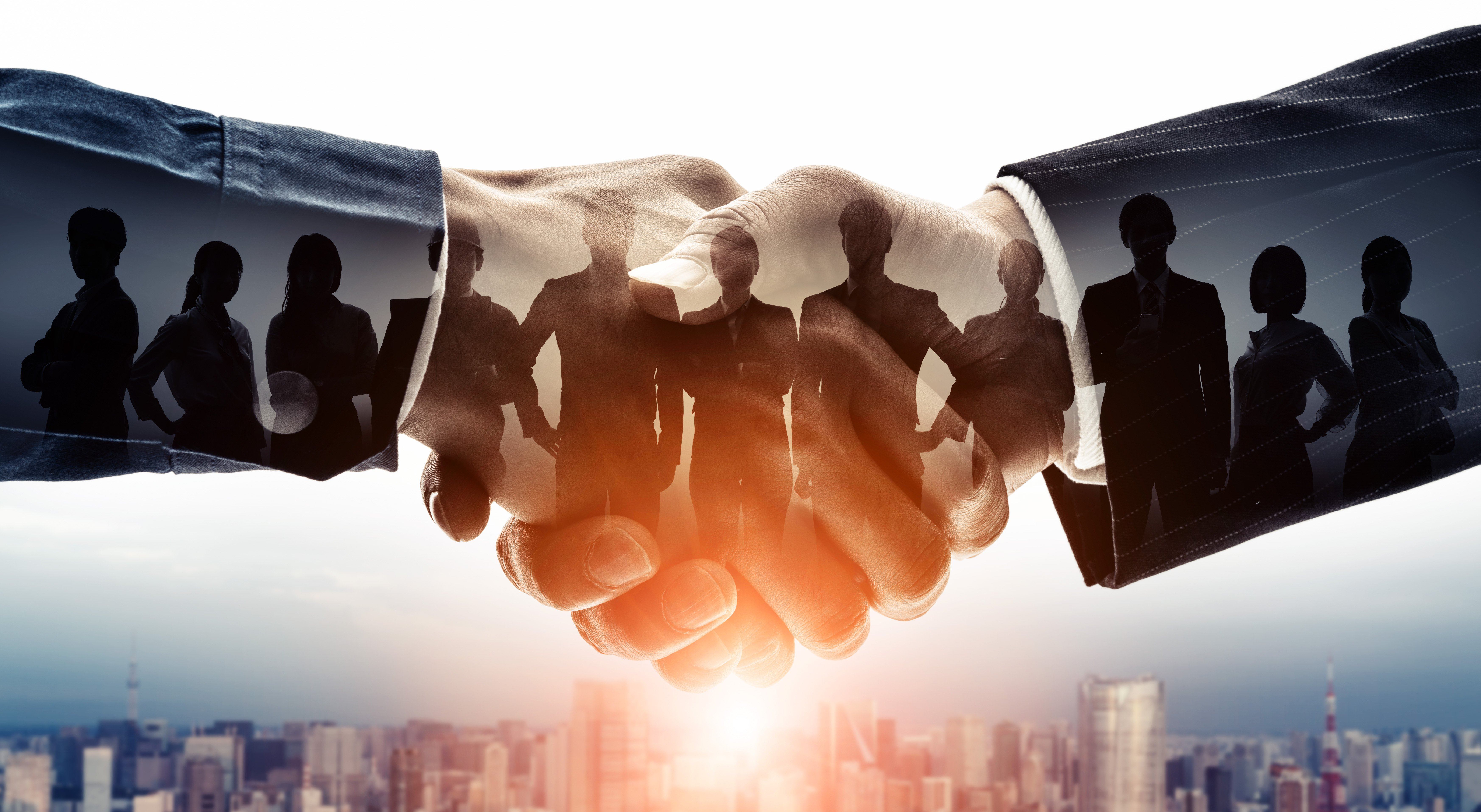 What Is The Black Swan Group's Negotiation 9™ (N9™)?